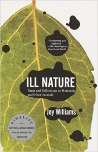 joy williams ill nature